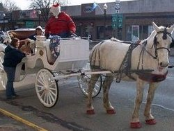 Horse rides given at annual Christmas festival in Coldwater, Michigan